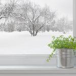 Soyez écoresponsable cet hiver