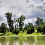 La ville guide vos actions environnementales